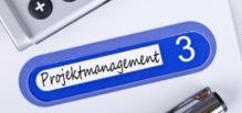 Studie Projektleiter Unternehmen Projektmanagement
