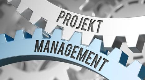 Projektmanagement Kompetenzen verändern sich