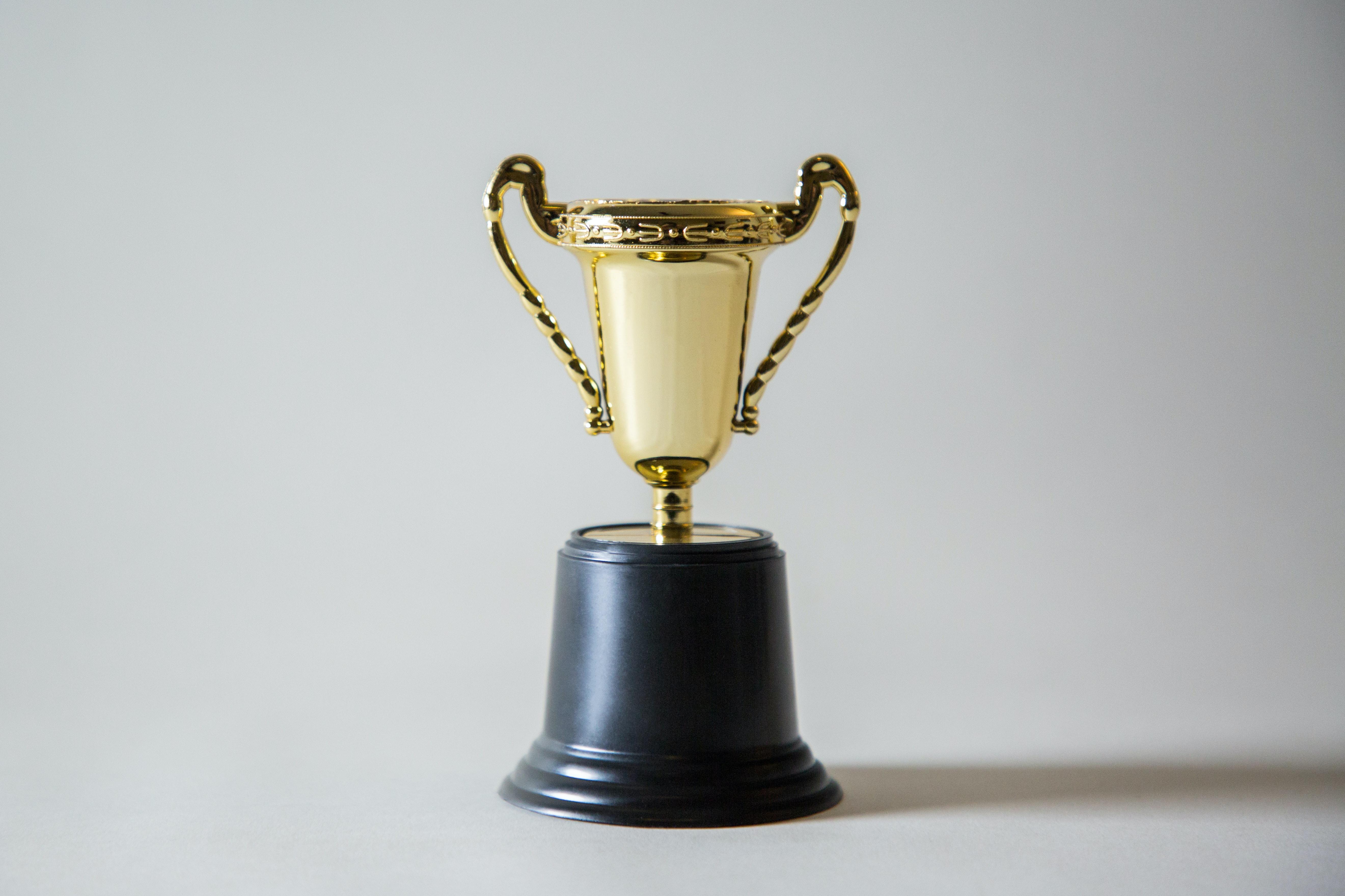 Innovationspreis-IT in der Kategorie HR